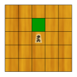 Shogi Pieces – The Pawn